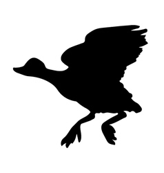 Duck Bird Silhouette vector