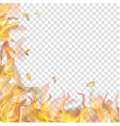 fire flame on left and below vector image