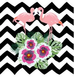 Flamingo flowers vector
