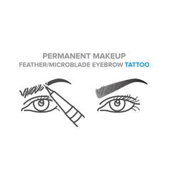 Permanent makeup feather microblade eyebrow vector