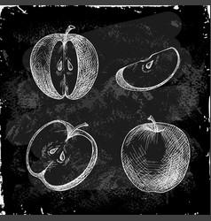 Set hand drawn apple vector