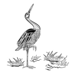 White Stork water bird vintage engraving vector image