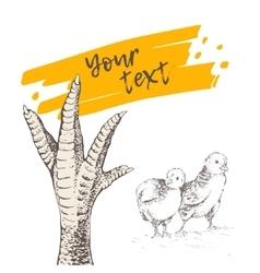 Chicken or turkey foot vector image vector image