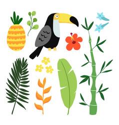 summer tropical graphic elements toucan bird vector image
