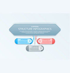 infographics template with 3 structure elements vector image vector image