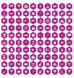 100 cow icons hexagon violet vector