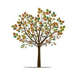 Autumn spring tree vector