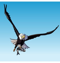 bird eagle in flight holding a fish vector image