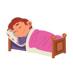 Cute boy sleeping in his bed preschool kid daily vector