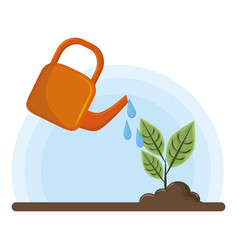 irrigated raised plant vector image