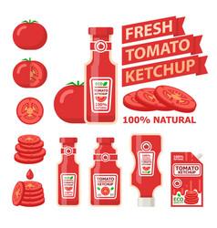 Tomato and fresh ketchup flat elements vector