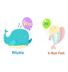 isolated alphabet letter w-whalex-x-ray fish vector image