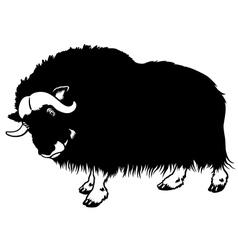 muskox black white vector image vector image
