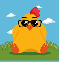 cute chicken animal cartoon vector image