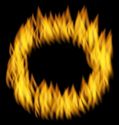 Fire Flame in Circular Frame Isolated on Black vector image