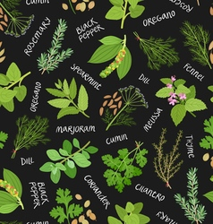 Herbs and spices seamless pattern on black vector image