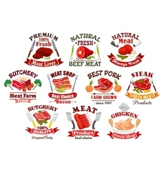 Pork meat and steak bacon and chicken icons vector