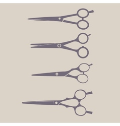 Professional Scissors Set vector image