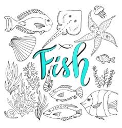 sketches fish set Hand drawn marine vector image