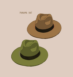 beach hat panama vector image