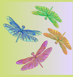 colorful dragonflies vector image vector image