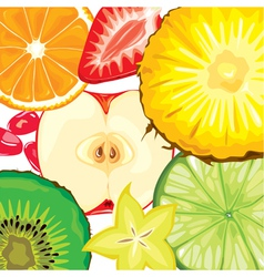 Fruit mix vector image