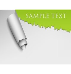 Ripped Wall Paper vector image