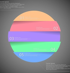 Dark inforgraphic with ring divided to five parts vector image