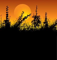 foliage silhouette vector image vector image