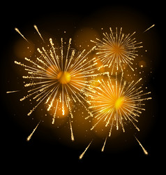 holiday firework vector image vector image