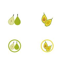 avocado template logo vector image