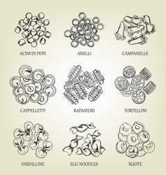 Collection different sorts macaroni vector