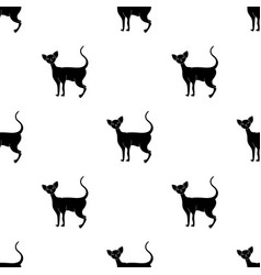 Cornish rex icon in black style isolated on white vector