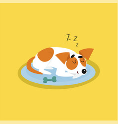 cute jack russell terrier sleeping on blue mat vector image