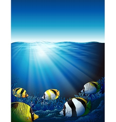 Fishes under the sea with sunlight vector