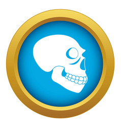 Skull icon blue isolated vector