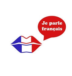 French Flag Lips vector image