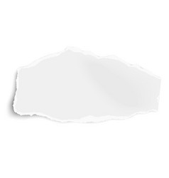 Ripped paper wisp with soft shadow isolated vector