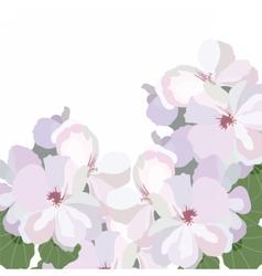 Spring Watercolor Watercolor Geranium flowers vector