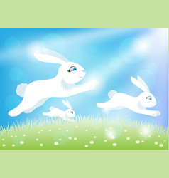 white easter bunnies on a green meadow vector image