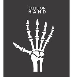 x rays design vector image
