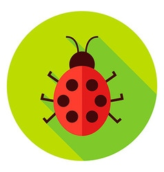 Ladybug Insect Circle Icon vector image vector image