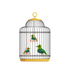 tropical birds in antique hanging cell beautiful vector image