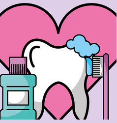 brusing tooth mouthwash love dentistry vector image