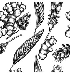 seamless pattern with black and white turmeric vector image