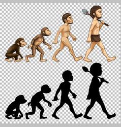 set human evolution transparent background vector image