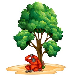 Tree and orangutan vector