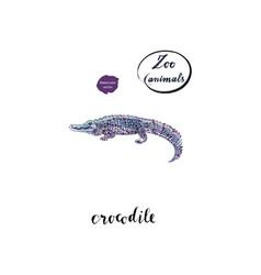 Watercolor crocodile alligator vector