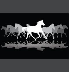 white trotting horses silhouette on black vector image