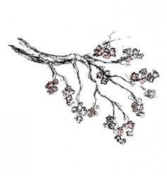 Spring sakura blossom drawing vector